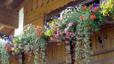 Balkonblumen, © Haus Antonius