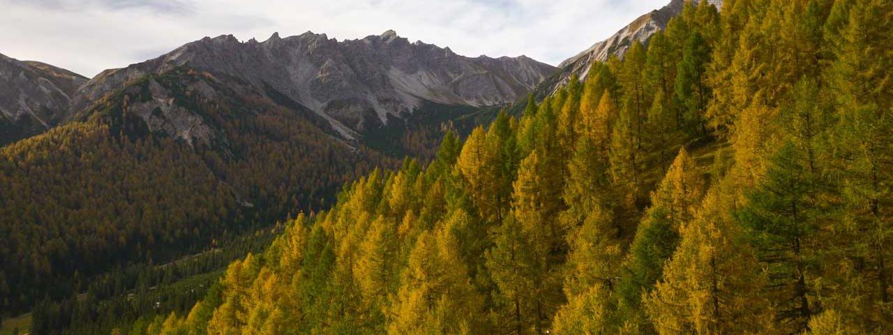 Autumn in Tirol: Eulenwiesen meadows, © Tirol Werbung/Mario Webhofer