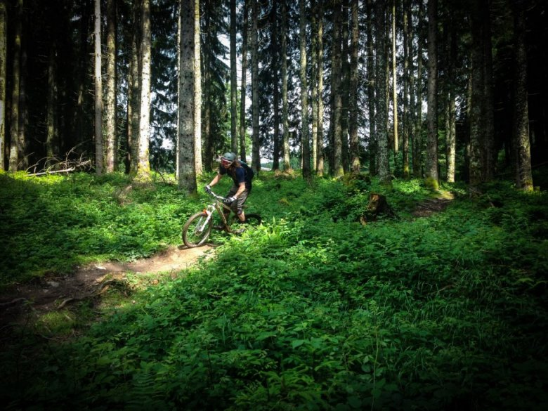 Feeling the flow in the forest section at the Fleckalm Trail. , © Steffen Arora