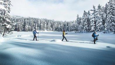 Schneeschuhwandern in Mösern, © Olympiaregion Seefeld - S.Elsler