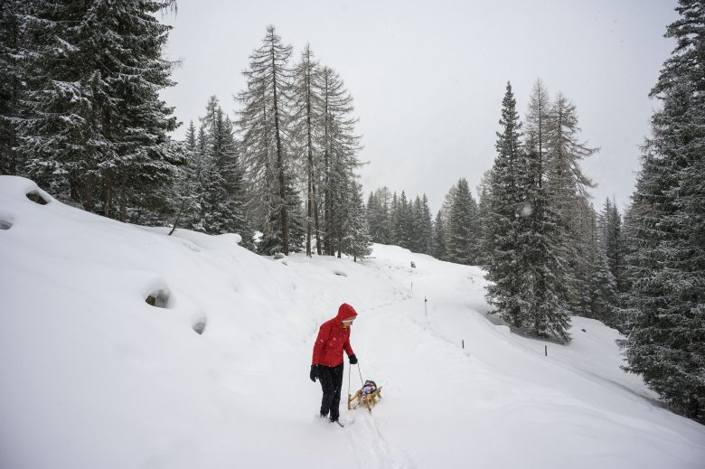 Tirol has the perfect toboggan run for all ages and abilities.
