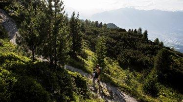 Zirbenweg Trail from Patscherkofel to Glungezer, © Region Hall-Wattens/Daniel Zangerl