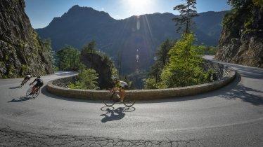 Roadbike riding in the Alpbachtal Valley, © Griessenböck
