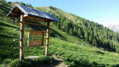 Wanderweg Richtung Toblacher Pfannhorn