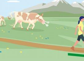 Correct Behaviour Part 8, © Landwirtschaftskammer Tirol