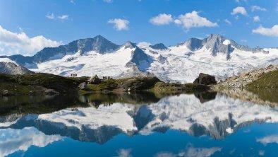 Hochgebirgs-Naturpark Zillertaler Alpen © Norbert