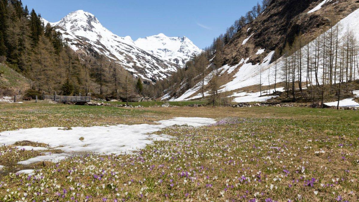 Gschlößtal Valley, © Tirol Werbung/Mario Webhofer