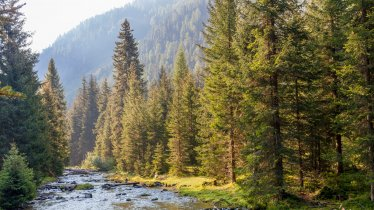 Nature Park Ötztal, © Tirol Werbung/Robert Pupeter