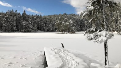 Verschneiter Möserer See, © Olympiaregion Seefeld