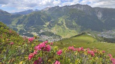 Alpine Rose Trail St. Anton, © TVB St. Anton am Arlberg/Josef Mallaun