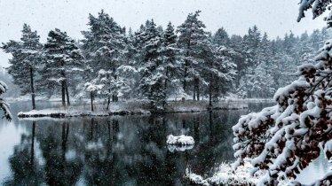 Winter hike to Mösern, © Olympiaregion Seefeld