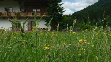 Fürstalm Alpendorf ApartmentSommer1
