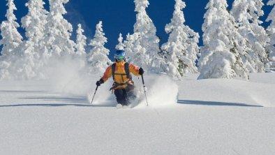 ..einfach nur Schifahren in den Kitzbühelern Alpen