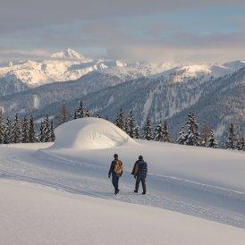 Winter Walking in Kartitsch, © Tirol Werbung / Katharina Poblotzki