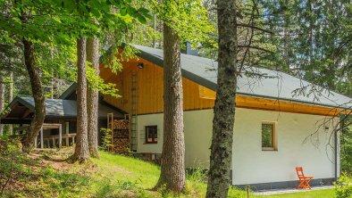 2979-Benko---Haus-im-Wald-2020