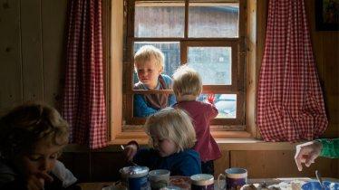 Farmstay Holiday, © Tirol Werbung/Verena Kathrein