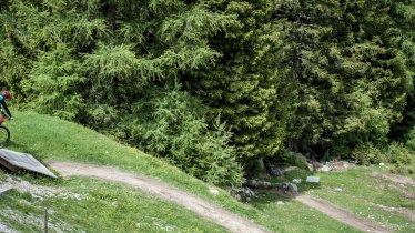 EinsEinser Trail in Neustift in the Stubaital Valley, © Rene Sendlhofer