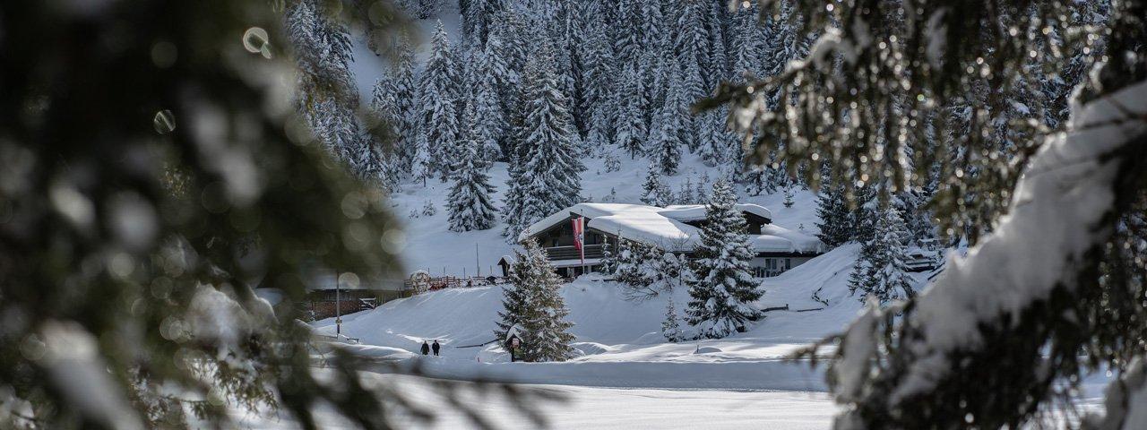 Cross-country skiing in Seefeld, © Olympiaregion Seefeld / Mathias Obmascher