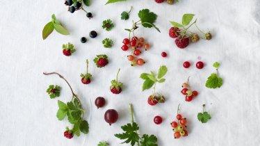 Wild berries, © Tirol Werbung / Kathrin Koschitzki