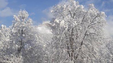 Winterlicher Park, © Karin Obermoser