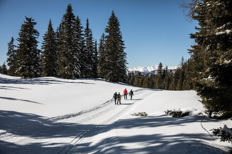 With each step you sink a few centimetres into the snow– ideal when walking downhill.