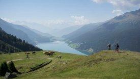 , © Tirol Werbung / Peter Neusser