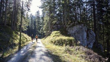 Walking across scenic Gaistal Valley, © Tirol Werbung/Dominik Gigler
