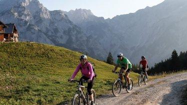 Mountain bike ride to the Walder Alm hut, © Tourismusverband Hall Wattens