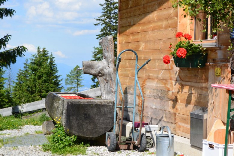 Running an Alpine pasture hut has its idyllic moments, but above all requires hard work and dedication.