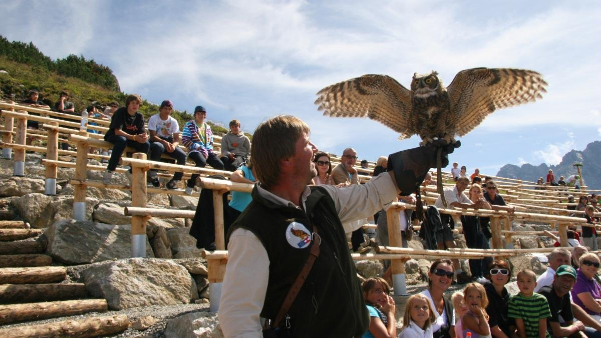 The Adlerbühne Ahorn is a birds of prey centre at 2,000m where visitors can marvel at the flying and hunting skills of buzzards, golden eagles and eagle owls during a special demonstration led by trained experts., © Mayrhofner Bergbahnen AG