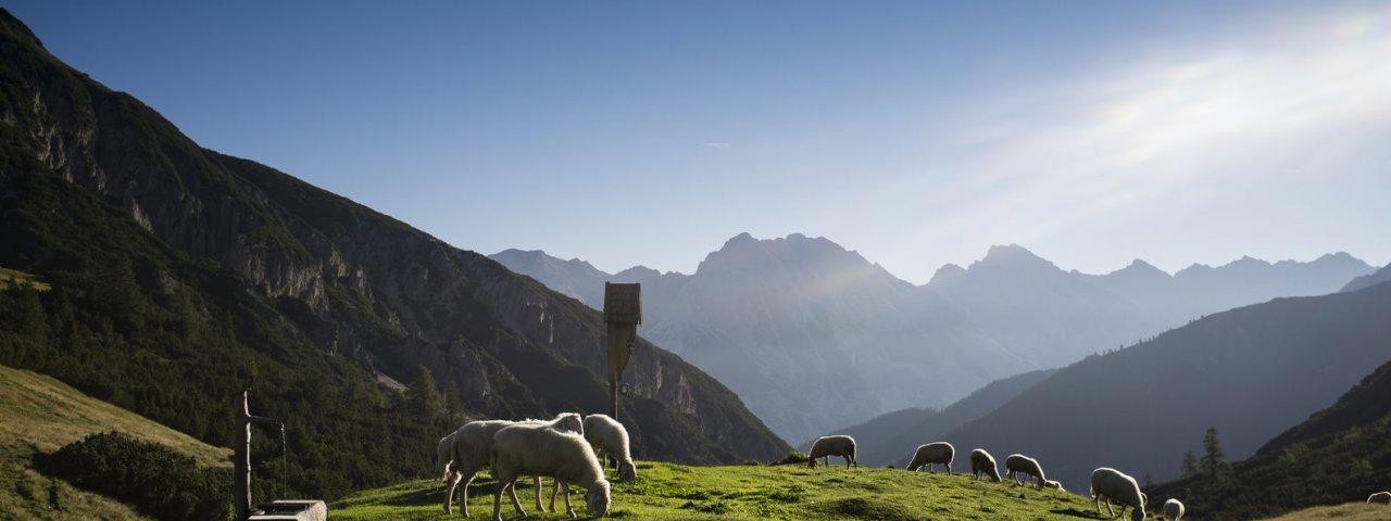 Eagle Walk Stage 14, © Tirol Werbung/Wiedenhofer Martina