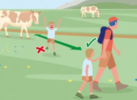 Correct Behaviour Part 7, © Landwirtschaftskammer Tirol
