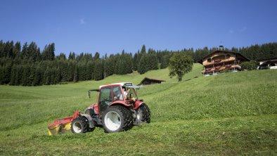 https://images.seekda.net/AT_UAB7-04-06-06/Traktorfahrt.jpg