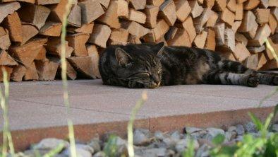 Ruhezone - die ruhige Lage überzeugt