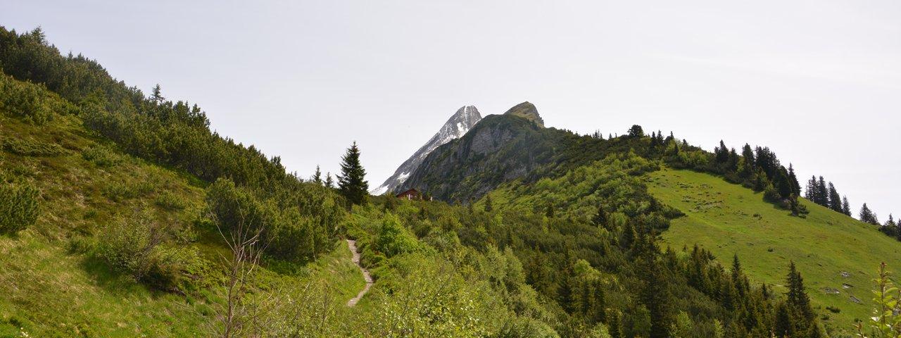 Brandberg Alpine Pastures Hike to the Kolmhaus hut, © Hochgebirgs-Naturpark Zillertaler Alpen